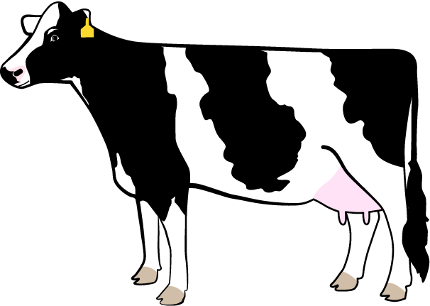 the legendairy cow rh dairydiscoveryzone com Lame Dairy Cow free dairy cow clipart