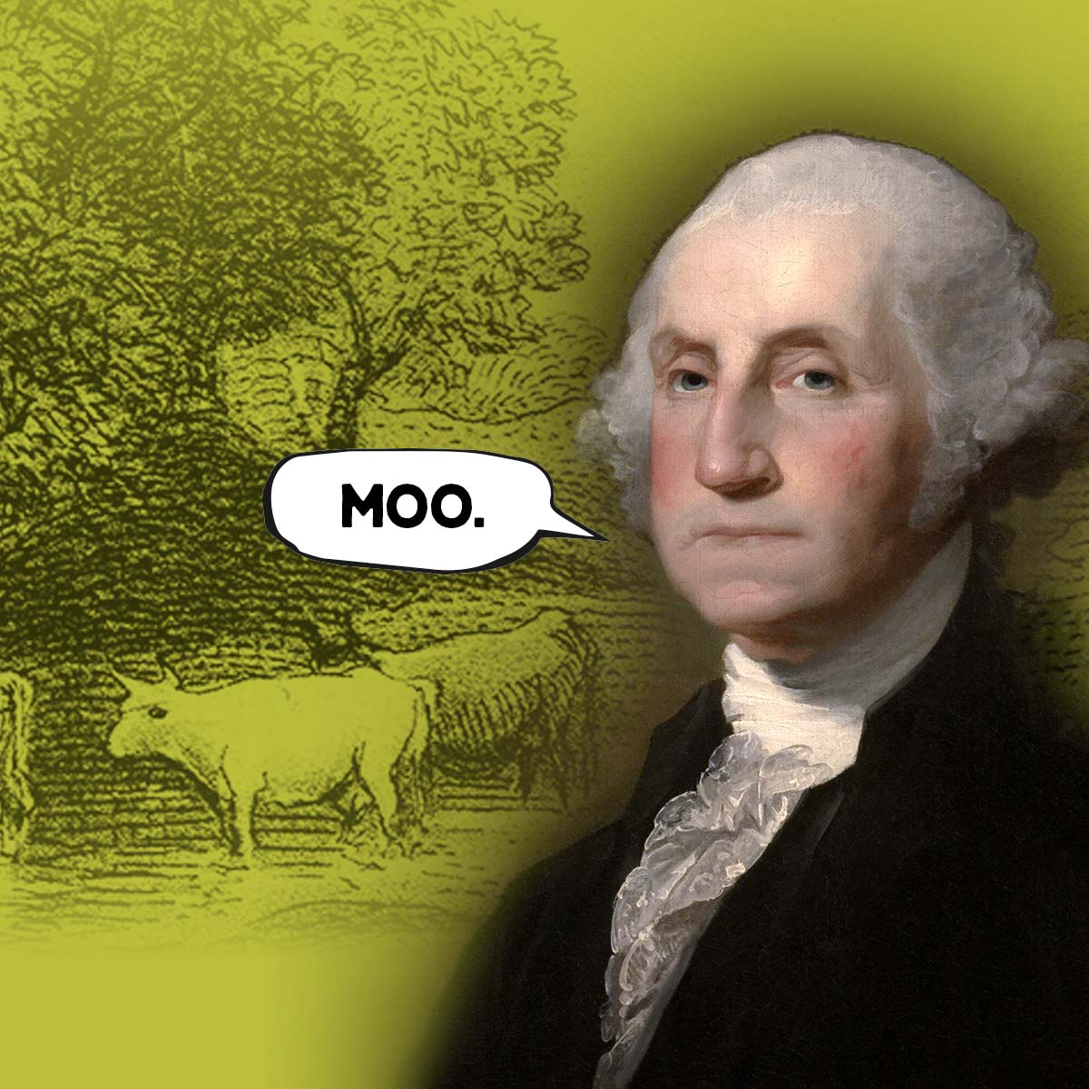 "picture of george washington with a word bubble that says ""moo"""