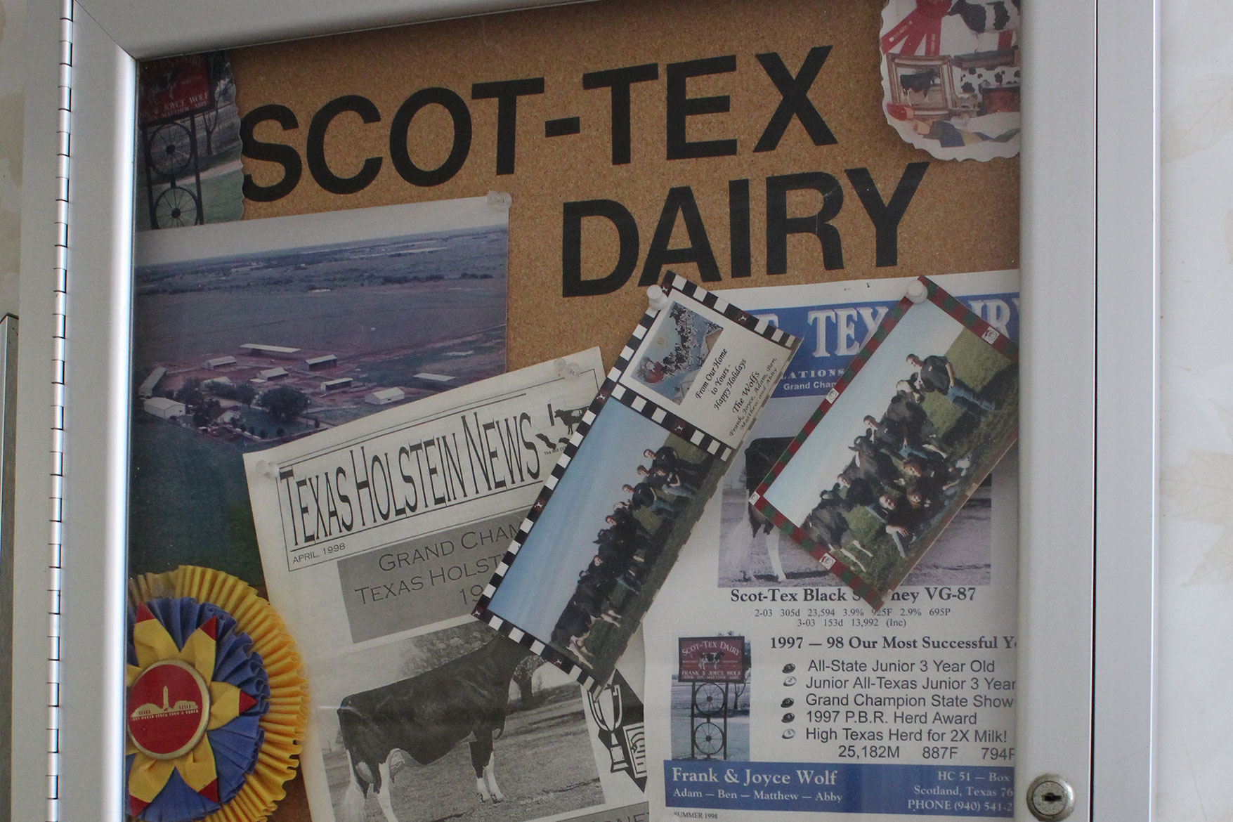 Memories of shows attended and won by cows from Scot-Tex Dairy.