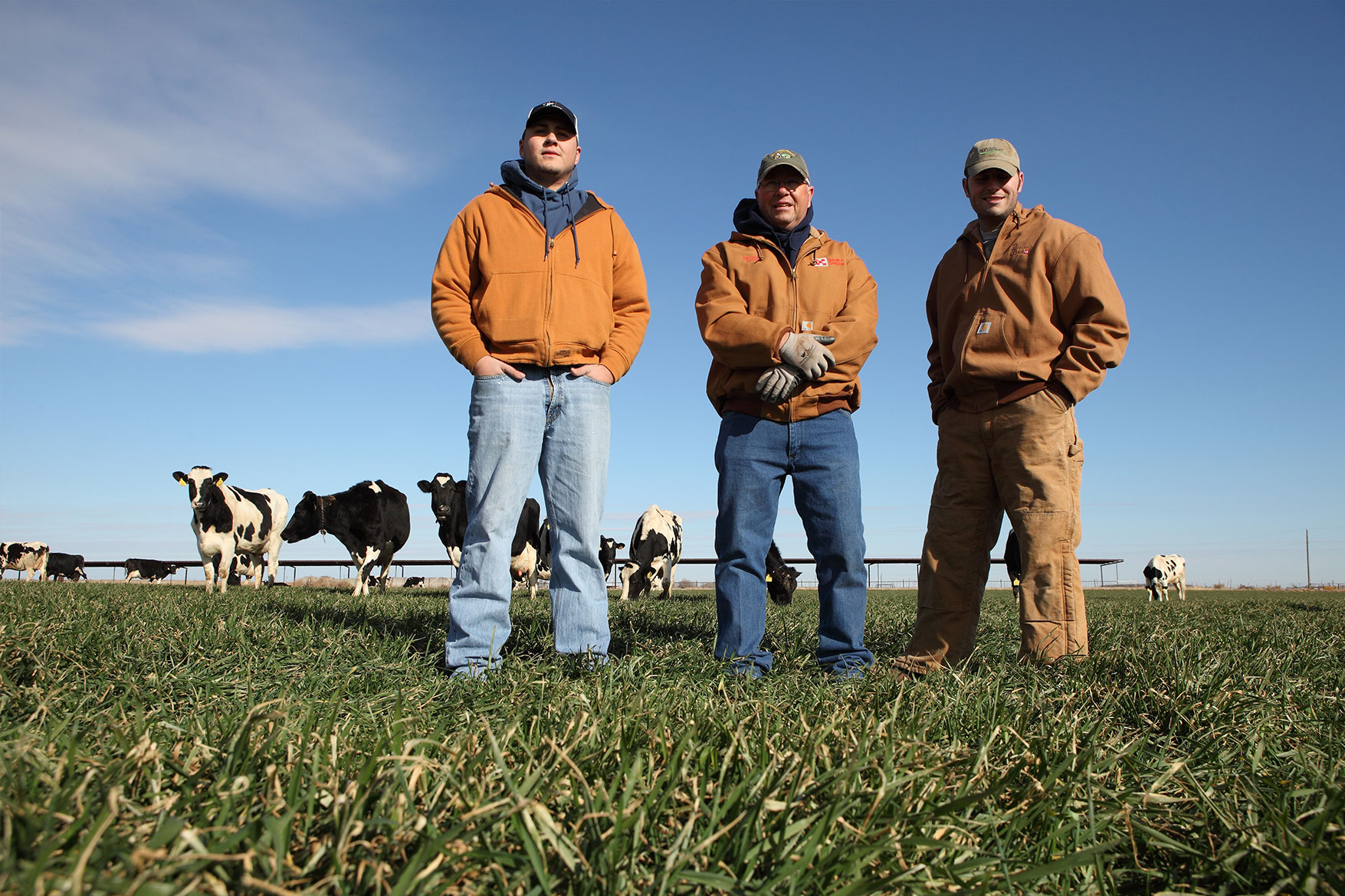 The Berend men pose for a photo with their herd in the pasture.