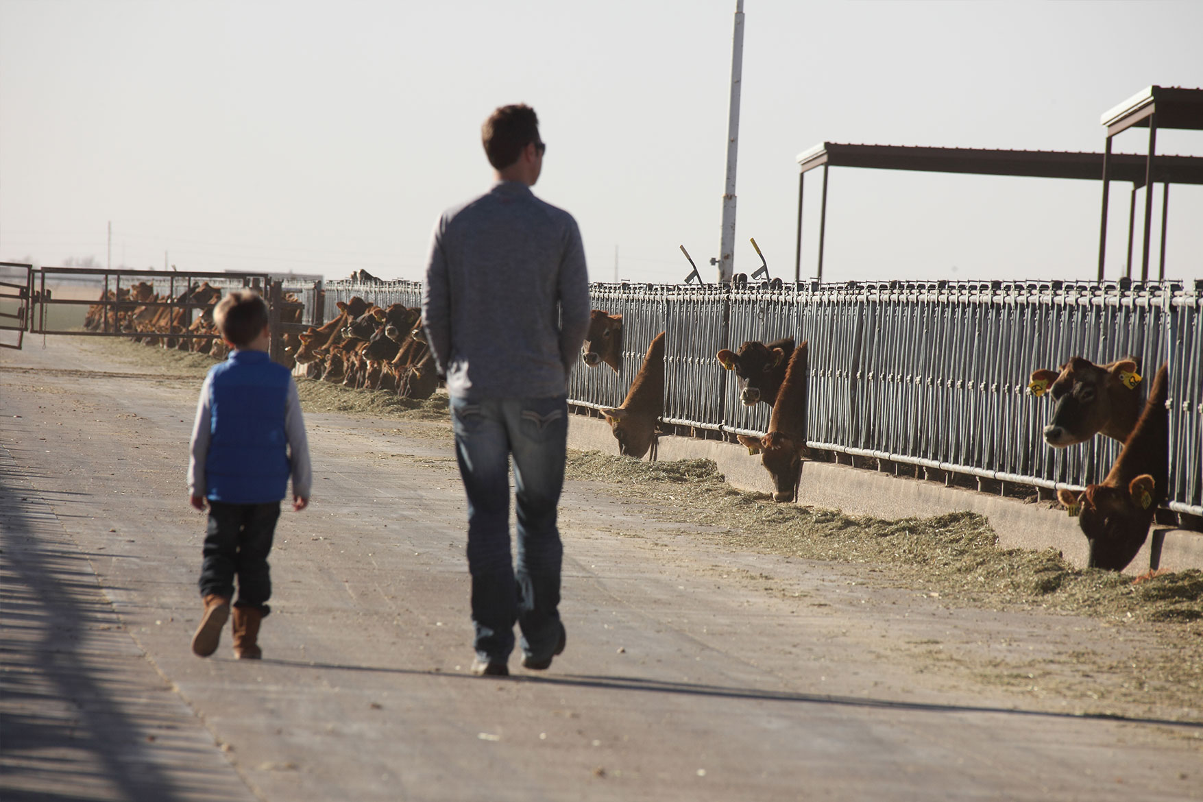 Father and son checking on the herd.