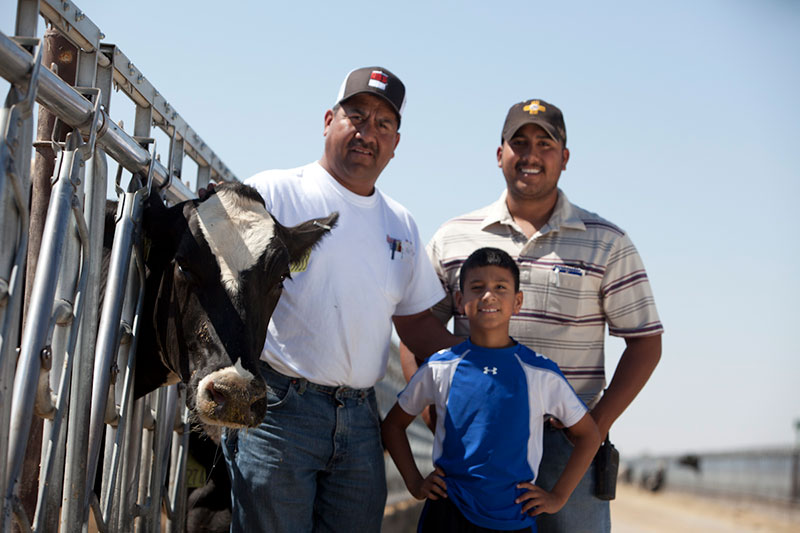 The Vasquez men pose with a Holstein cow.