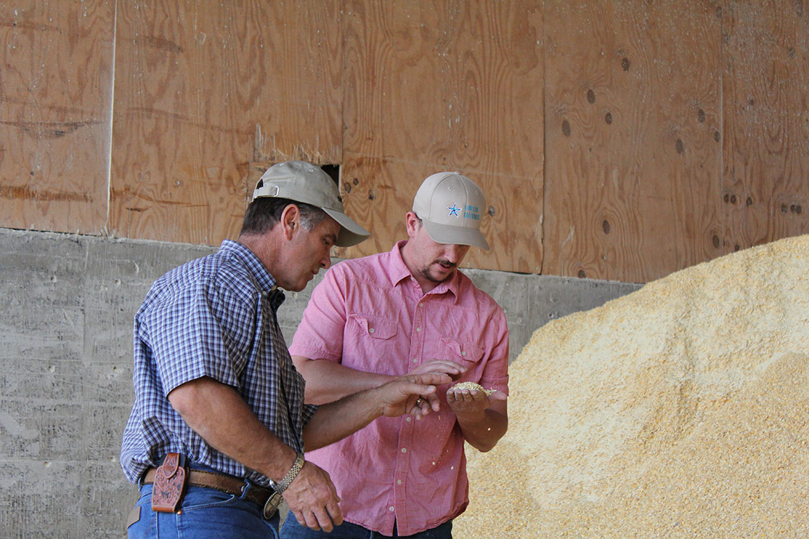 Rocky and Nathan examining feed ingredients at Del Rio Dairy.