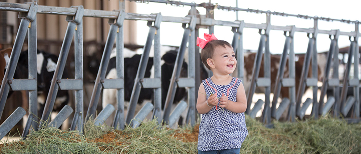 Dairy's Adorable Next Generation