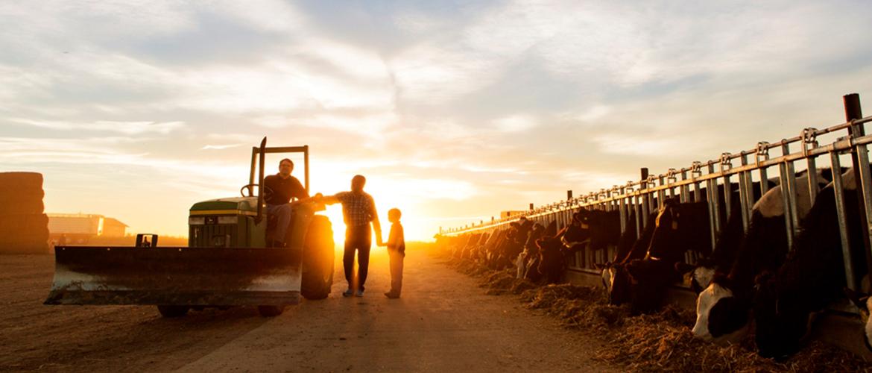 Heartwarming to Breathtaking: Our Favorite Farm Photos