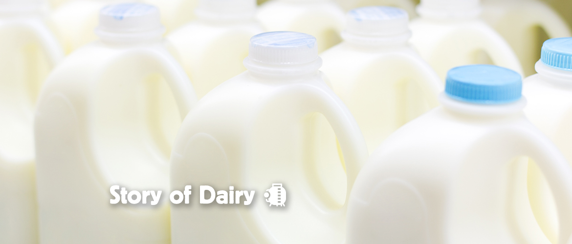The Story of Dairy: What Happens When We Process Milk