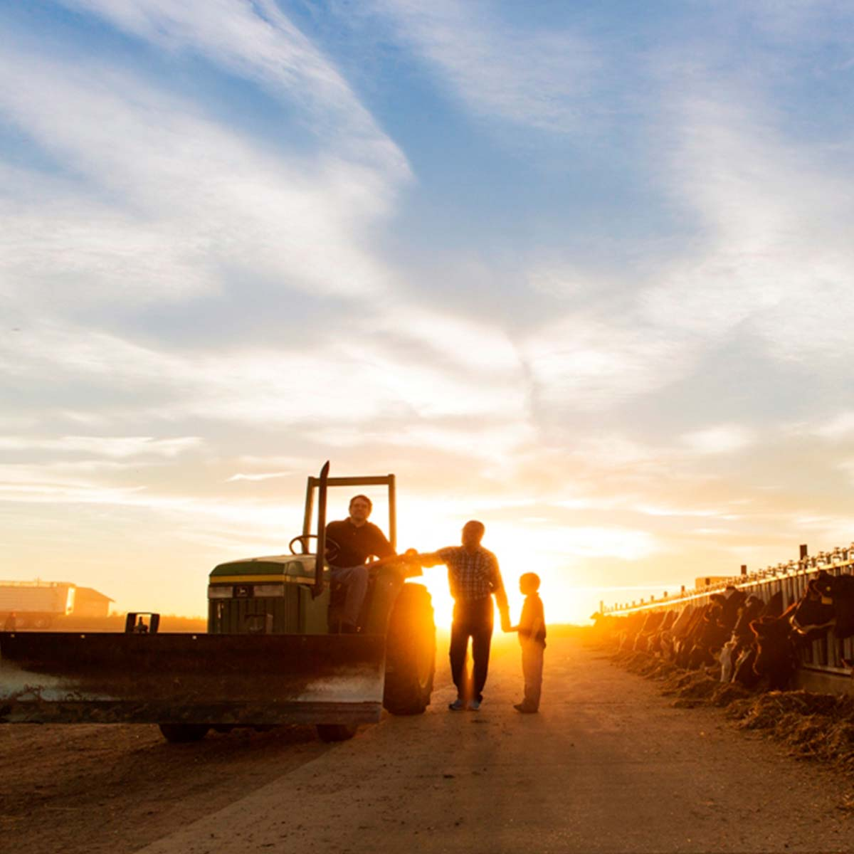 Heartwarming to Breathtaking: Our Favorite Farm Photos