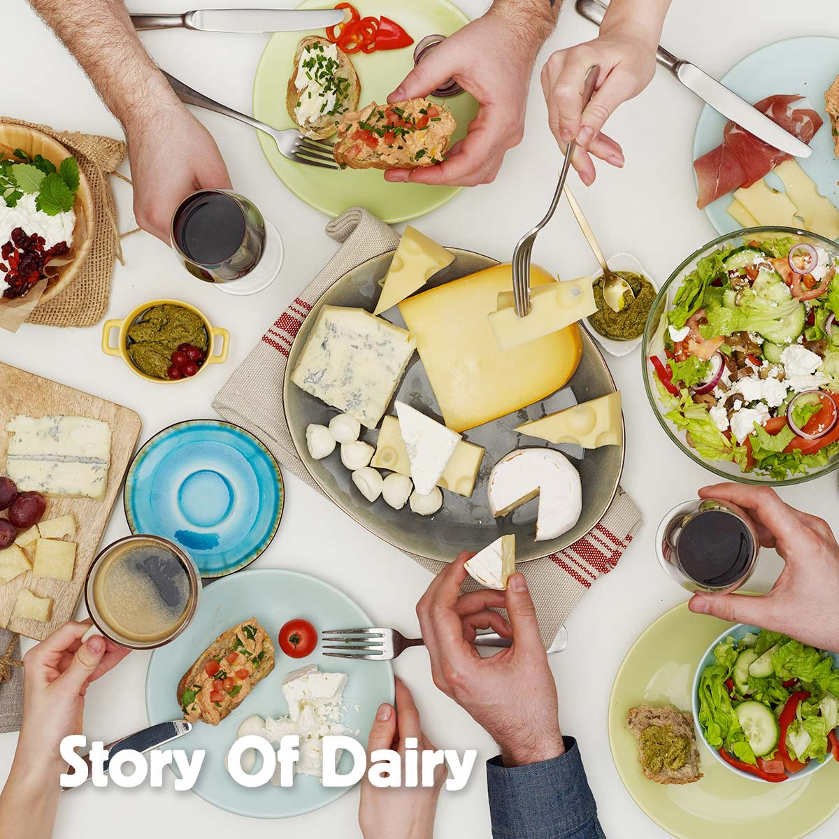 From the Farm to Your Fridge – the Story of Dairy
