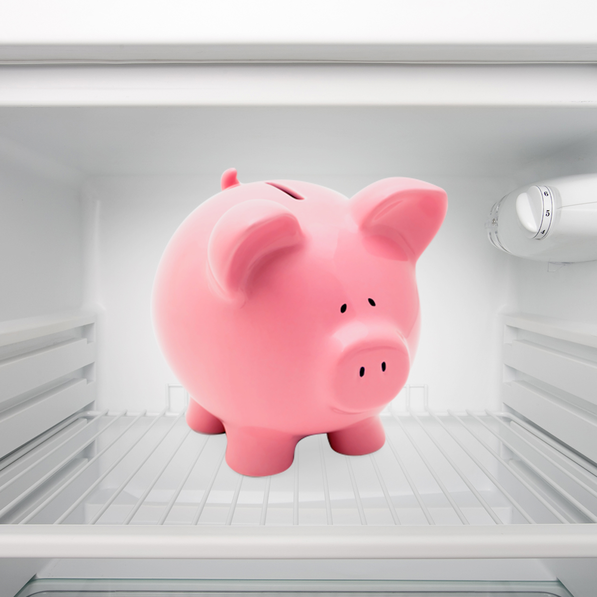Pink Pig Thumbnail