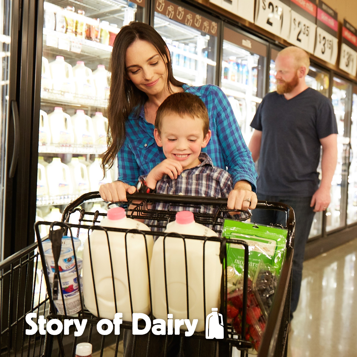 The Story of Dairy: Where You Purchase Your Milk