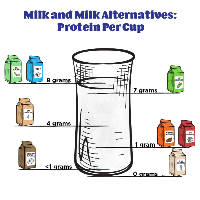 Milk and Milk Alternatives: Protein Per Cup