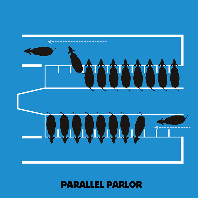 Parallel Parlor